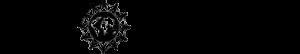 logo - siyah